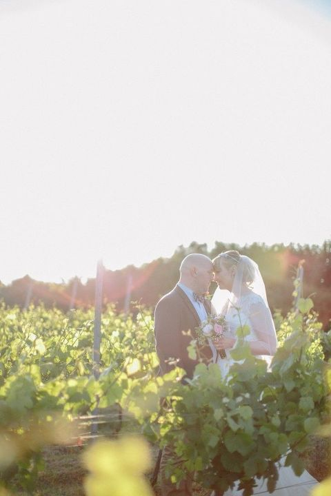 Court Gardens Farm Wedding Vineyard Portraits at Sunset